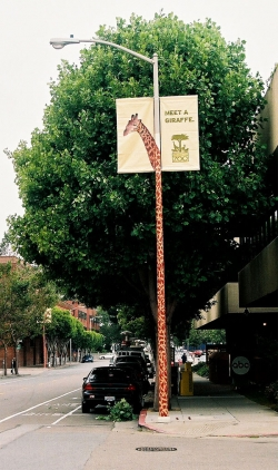 http://www.bestadsontv.com/files/print/2006-Jul/tn_3028_Zoo_tree_sm.jpg