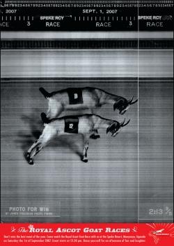 http://www.bestadsontv.com/files/print/2007/Aug/tn_8035_goats.jpg