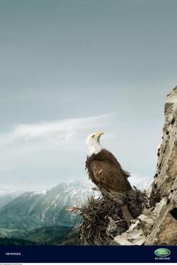 http://www.bestadsontv.com/files/print/2008/Dec/tn_18610_Landrover_Eagle.jpg