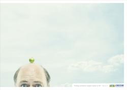 http://bestadsontv.com/files/print/2008/Jun/tn_14909_crestor_apple_Lrez2.jpg