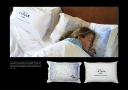 http://bestadsontv.com/files/print/2008/Mar/tn_12272_Catsan_pillow.jpg