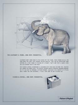 http://www.bestadsontv.com/files/print/2009/Oct/tn_25070_Elephant.jpg