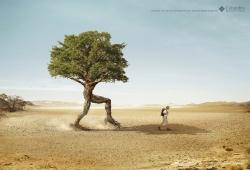 http://www.bestadsontv.com/files/print/2011/Feb/tn_34772_COLUMBIA_TREE_copia.jpg