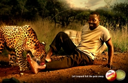 http://www.bestadsontv.com/files/print/2011/Jan/tn_33965_leopard.jpg