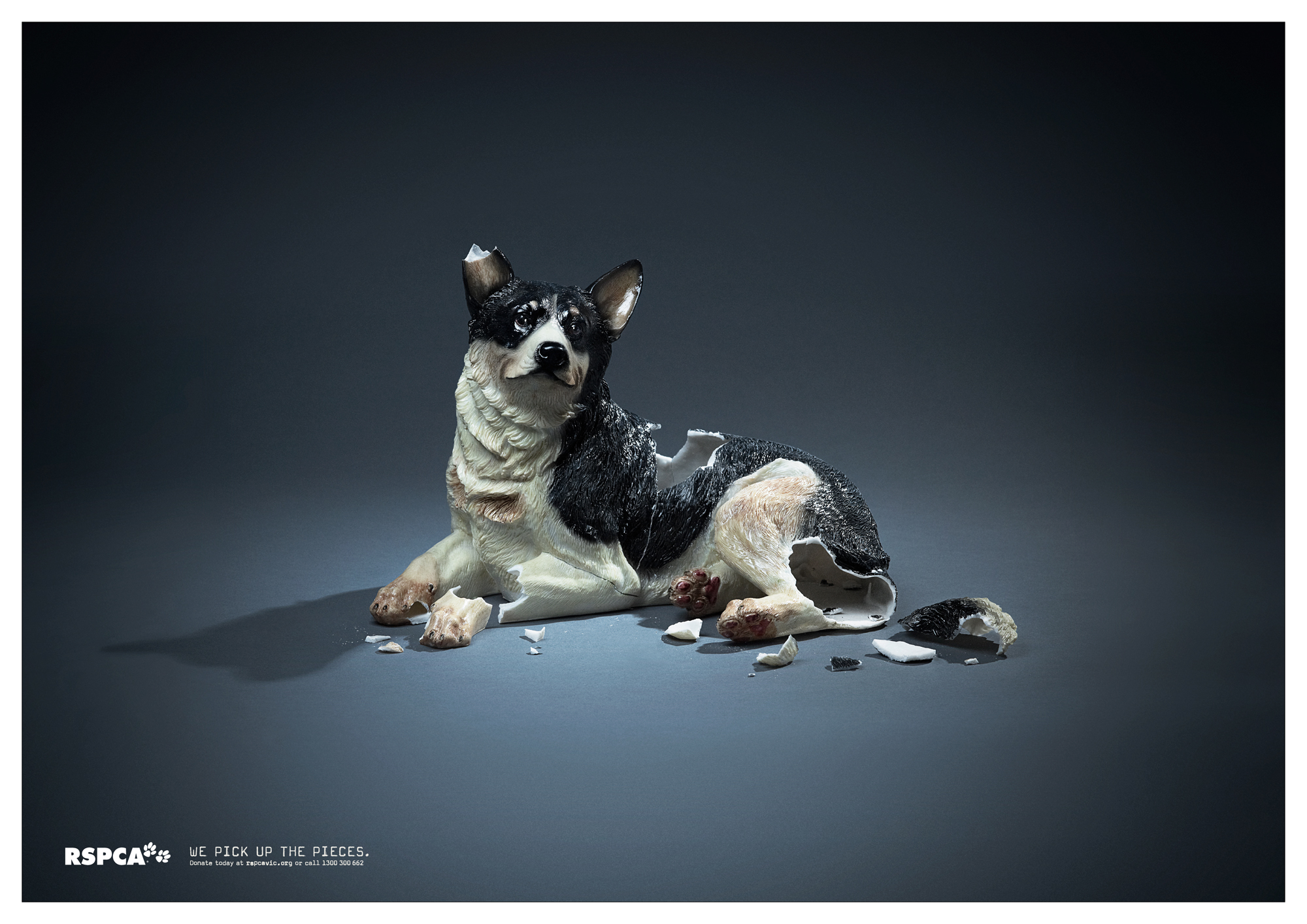 Print Ad Rspca Victoria We Pick Up The Pieces Dog