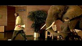 http://www.bestadsontv.com/files/thumbnails/2006-Aug/Elephant45.jpg