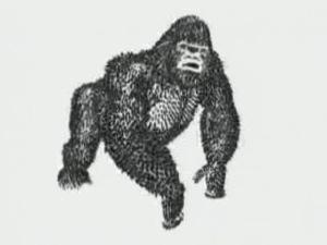 http://bestadsontv.com/files/thumbnails/2007/Feb/5110_WWF_Gorilla.jpg