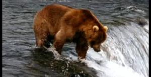 http://bestadsontv.com/files/thumbnails/2007/Feb/5125_JohnWest_fishingTackle.jpg
