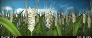 http://www.bestadsontv.com/files/thumbnails/2009/Jun/22649_GROWING.jpg