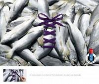 http://www.bestadsontv.com/includes/image.php?image=http%3A%2F%2Fwww.bestadsontv.com%2Ffiles%2Fprint%2F2012%2FJan%2Ftn_42218_Fish.jpg&width=200