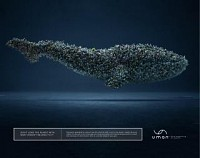 http://www.bestadsontv.com/includes/image.php?image=http%3A%2F%2Fwww.bestadsontv.com%2Ffiles%2Fprint%2F2017%2FAug%2Ftn_88759_Whale+.jpg&width=200