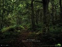 http://www.bestadsontv.com/includes/image.php?image=http%3A%2F%2Fwww.bestadsontv.com%2Ffiles%2Fprint%2F2017%2FFeb%2Ftn_85013_kws+Forest.jpg&width=200