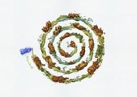 http://www.bestadsontv.com/includes/image.php?image=http%3A%2F%2Fwww.bestadsontv.com%2Ffiles%2Fprint%2F2018%2FJun%2Ftn_95023_The+Bear.jpg&width=200