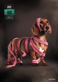 https://www.bestadsontv.com/includes/image.php?image=https%3A%2F%2Fwww.bestadsontv.com%2Ffiles%2Fprint%2F2018%2FAug%2Ftn_96209_FeelClean+-+Dog.jpg&width=200