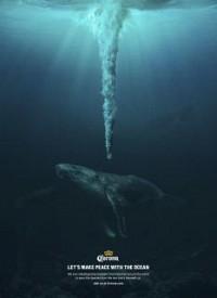 https://www.bestadsontv.com/includes/image.php?image=https%3A%2F%2Fwww.bestadsontv.com%2Ffiles%2Fprint%2F2020%2FOct%2Ftn_119601_1603745284_1-Whale-LowRes.jpg&width=200