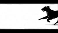 https://www.bestadsontv.com/includes/image.php?image=s3://bestadsontv.com/thumbs/109e8_0000.png&width=200