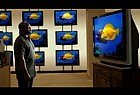 Comcast: Fishes
