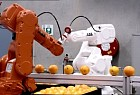 ASIMO-The worlds most advanced humanoid robot: Oranges