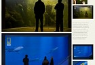 National Geographic High Definition Television: Aquarium