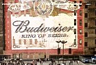 Budweiser: Lyrics