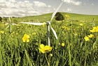 Fuji Xerox NZ: A little bit of energy - windmills