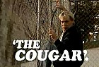 Cougar Bourbon: The art of invisible-ness