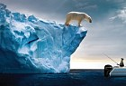 Mercury Marine: Polar Bear