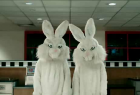 Hungry Jack's: Rabbits