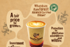 Dav Tabeshfar: Rainforest Alliance Coffee: Stimulation
