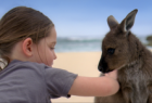 Tourism Australia: There's Nothing Like Australia 2012