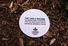 Molson Canadian: Seed Coasters
