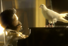 Digital Radio UK and BBC: Endless Dove