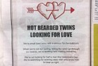 Tooheys 5 Seeds Cider: Hot bearded twins looking for love