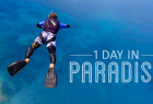 Tropical North Queensland: 1 Day in Paradise - Trailer