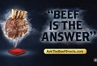 MLA Beef: Beef Is The Answer