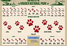 National Geographic Kids Magazine: Paw Print