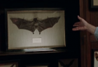 New York  Lottery: Bat Collector