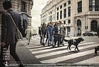 Belgian Centre for Guide Dogs: Crossing
