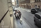 Belgian Centre for Guide Dogs: Street