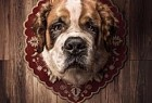 PETA (People for the Ethical Treatment of Animals): PETA Trophies - Saint Bernard