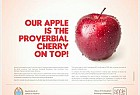 Apple Year Campaign: Cherry