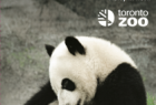 Toronto Zoo: They're leaving