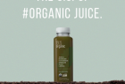Campbell's Fresh Bolthouse 1915 Organic Cold Pressed Juice: The O.G.