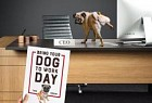 Reflex Paper: Bring your dog to work