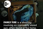 Brady Center to Prevent Gun Violence: End Family Fire, 3