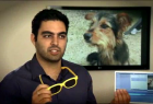 Pedigree Adoption Drive: Donation Glasses