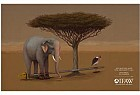 IFAW (International Fund for Animal Welfare): Elephant