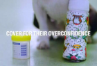 RACV Pet Insurance: Overconfidence Cover - Cast