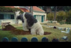 Skoda France: Doug The Dog