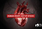 Über Leben Foundation: Human Heart. Out of Stock